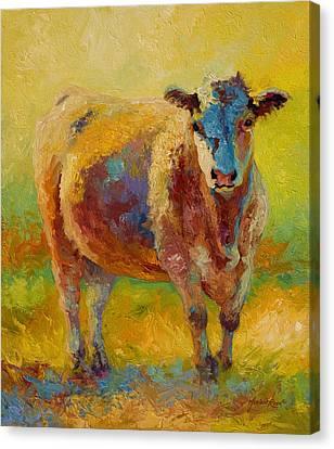 Blondie - Cow Canvas Print