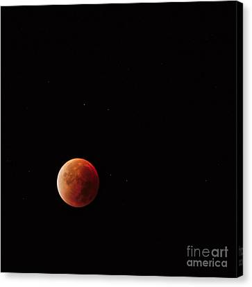 Blood Moon Canvas Print by Angelo DeVal
