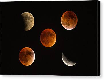Blood Moon Eclipse Compilation Canvas Print