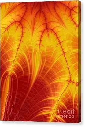 Blood Orange Canvas Print by John Edwards