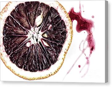 Sour Canvas Print - Blood Orange by Masako Metz