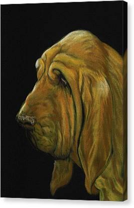 Bloodhound Canvas Print