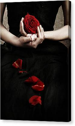 Bloody Rose Canvas Print by Cambion Art