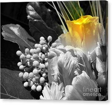 Bloom Canvas Print by Sian Lindemann