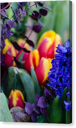 Bloomin' Spring Canvas Print