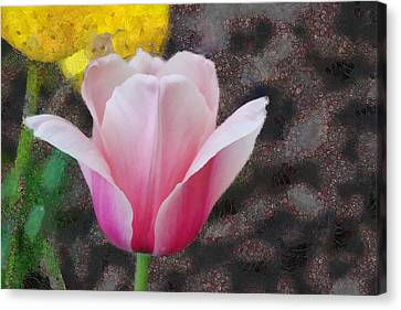 Canvas Print featuring the mixed media Bloomin' by Trish Tritz