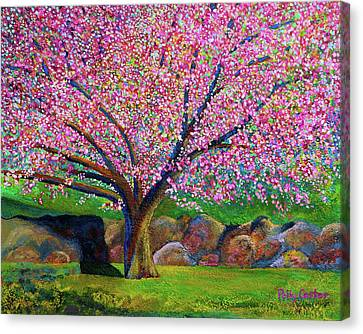 Blooming Crabapple In Evening Light Canvas Print by Polly Castor