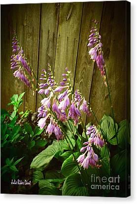 Blooming Hostas Canvas Print by Julie Dant