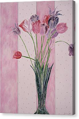 Blooming Tulip Colors Canvas Print