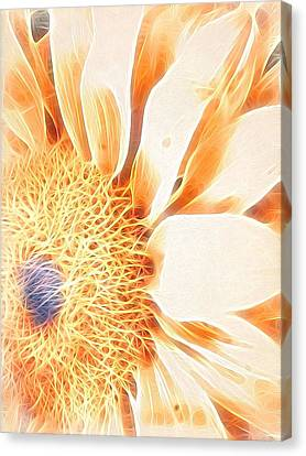 Bloomlit Canvas Print