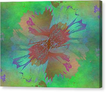 Blooms In The Mist Canvas Print by Tim Allen