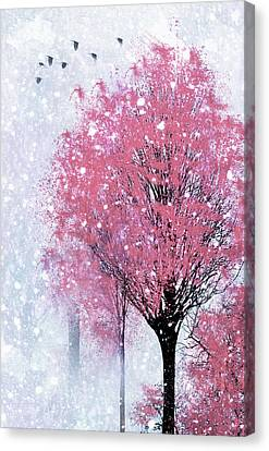 Blossoms In Winter Wall Art Canvas Print