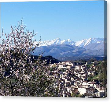 Blossoms With A View Canvas Print by Judy Kirouac