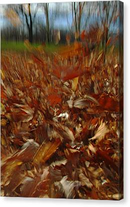 Blowing In The Wind Canvas Print by Juergen Roth