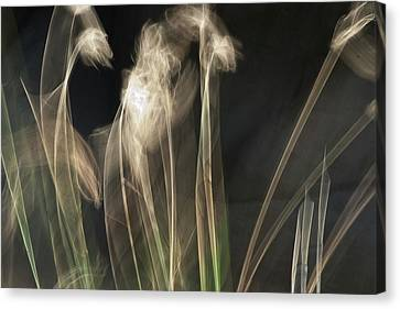 Canvas Print featuring the photograph Blowing In The Wind by Roger Mullenhour