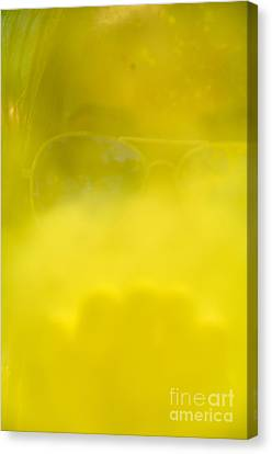 blowing yellow Holi Canvas Print by Aleksey Tugolukov