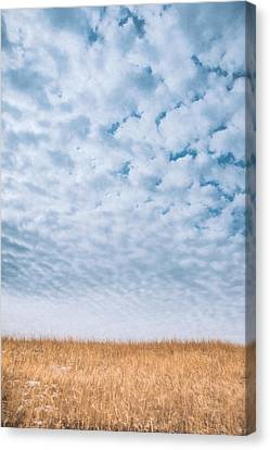 Blue And Amber Canvas Print