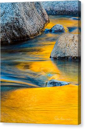 Blue And Gold 0557 Canvas Print