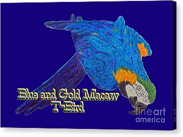 Macaw Canvas Print - Blue And Gold Macaw by Zazu's House Parrot Sanctuary