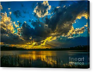 Blue And Gold Sunset With Rays Canvas Print by Tom Claud