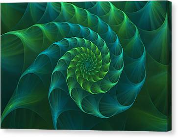 Blue And Green Nautilus Shell Canvas Print by Anna Bliokh