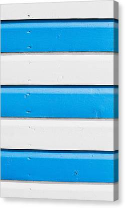 Blue And White Wood Canvas Print by Tom Gowanlock