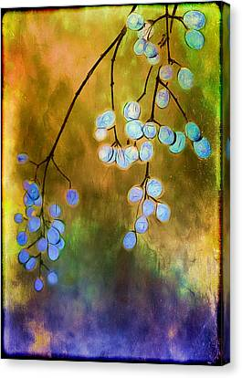 Blue Autumn Berries Canvas Print