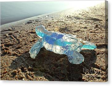 Canvas Print - Blue Baby Sea Turtle From The Feral Plastic Series By Adam Long  by Adam Long