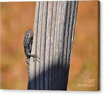 Canvas Print featuring the photograph Blue Bits by Al Powell Photography USA