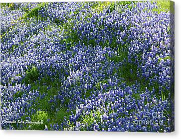 Blue Bonnet Waves Canvas Print