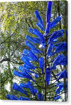 Blue Bottle Tree Canvas Print by Warren Thompson