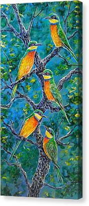 Blue Breasted Bee Eater Canvas Print by Gail Butler