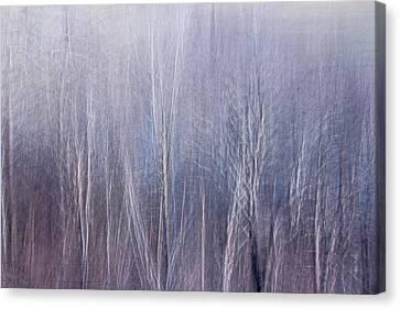 Blue Brush Canvas Print