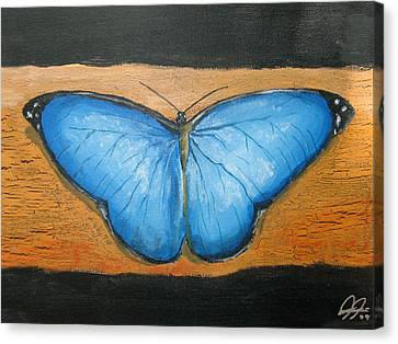 Blue Butterfly Canvas Print by Christian  Hidalgo