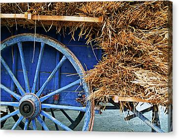 Blue Cart Full With Load Of Straw Canvas Print