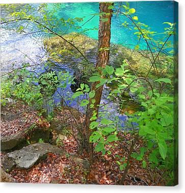 Blue Chill Canvas Print