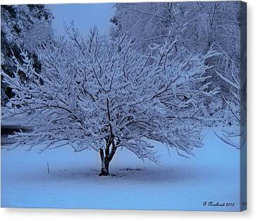 Canvas Print featuring the photograph Blue Christmas by Betty Northcutt