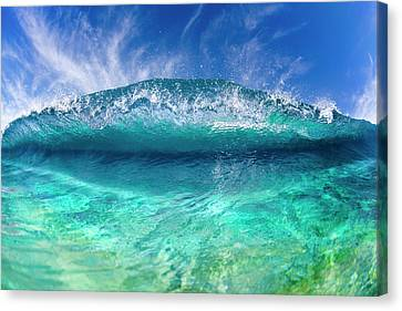 Blue Clam Canvas Print