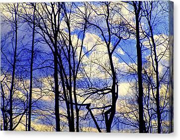 Blue Clouds Canvas Print by Aron Chervin