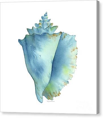Blue Conch Shell Canvas Print