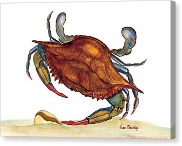 Canvas Print featuring the painting Blue Crab by Anne Beverley-Stamps