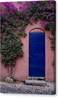 Blue Door And Bougainvilleas Canvas Print by Carol Leigh