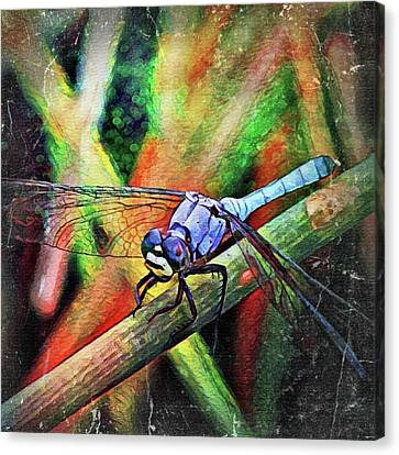 Canvas Print featuring the painting Blue Dragonfly by David Mckinney