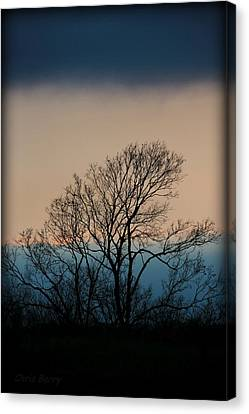Canvas Print featuring the photograph Blue Dusk by Chris Berry