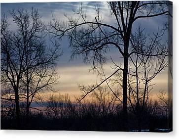 Blue Eye Sunrise Canvas Print by Gwen Vann-Horn