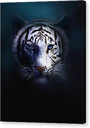 Old Blue Eyes Canvas Print by Robert Foster
