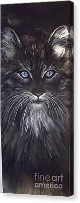 Blue Eyes The Cat Canvas Print