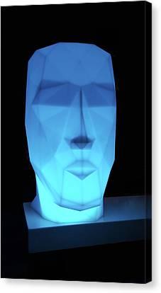 Blue Face Canvas Print by Art Spectrum