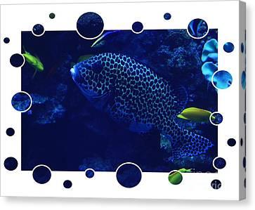 Blue Fish Canvas Print by Carol Groenen