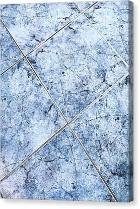 Blue Floor Tiles Canvas Print by Tom Gowanlock
